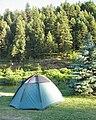 Hilgard Jct Campground.JPG