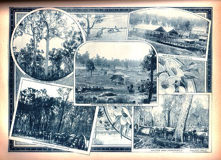 History of West Australia, picture P148a.JPG