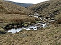 Holme Clough - geograph.org.uk - 407082.jpg