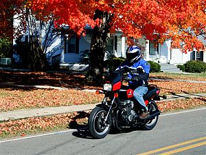 Honda CB700SC Night hawk red leaves.jpg