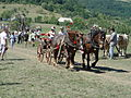Hontianska parada 2003-DSC01246.JPG