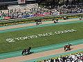 Horse racing @ Tokyo Race Course @ Fuchu (14097747216).jpg