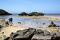 Hoshizuna-no-hama Iriomote Island08bs3s4350.jpg