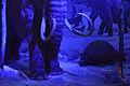 Ice Age Mammals - Dark Ride - Science Exploration Hall - Science City - Kolkata 2016-02-22 0404.JPG