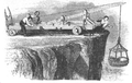Illustrirte Zeitung (1843) 10 152 2 J Johnson's Klippenkrahn.PNG