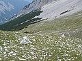 Im Hinterkar - panoramio.jpg