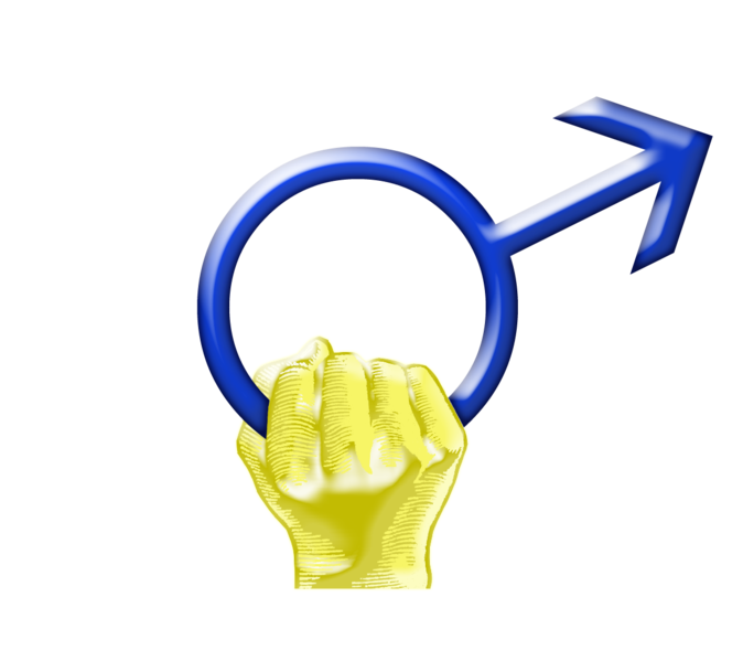 File:International Men's Day Symbol.png