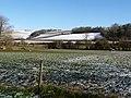 Iwerne Courtney, horse and hillsides - geograph.org.uk - 1152957.jpg