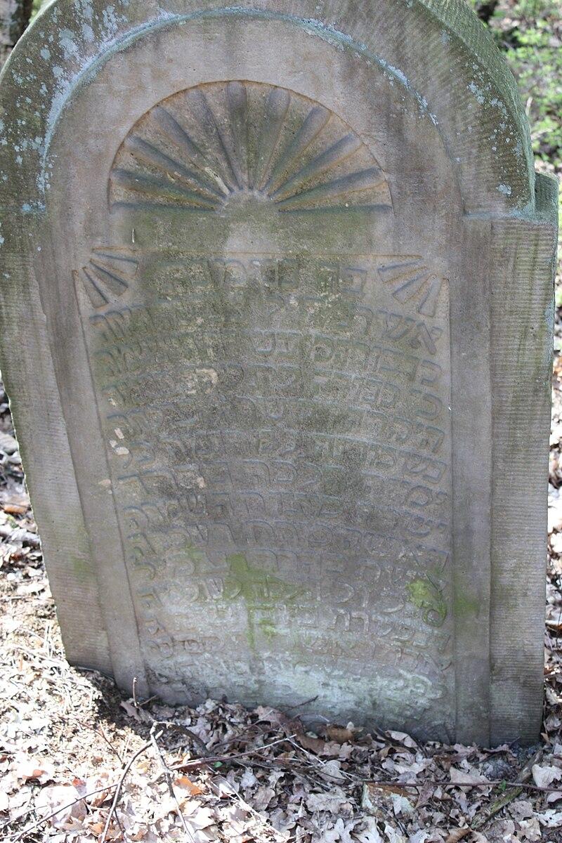 Jüdischer Friedhof Hoyerhagen 20090413 018.JPG
