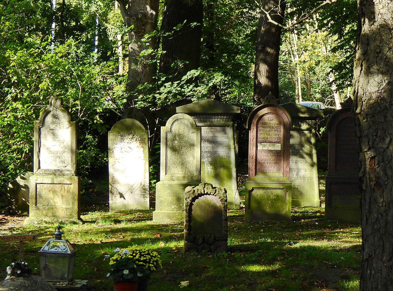 Jüdischer Friedhof in Burgdorf 02.jpg