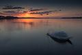 J.Drawsko, Czaplinek, majowy zachód słońca 01.jpg
