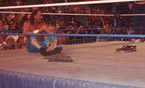 Jake Roberts - Many of Roberts' storylines revolved around the use of his snake Damien, seen here in the middle of the ring.