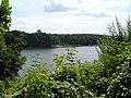 Jezioro Zaleskie - panoramio.jpg