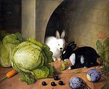 dead rabbit on doorstep