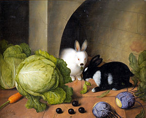 Rabbits and hares in art - Rabbits by Johann Georg Seitz