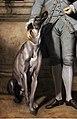 Joshua reynolds, richard peers symons, m.p. (poi baronetto), 1770-71, 02 cane levriero.jpg