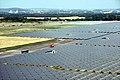 Juwi PV Field.jpg