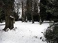 Köln, aufgelassener Friedhof auf der Decksteiner Strasse - panoramio - rucksackkruemel.jpg