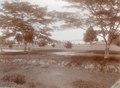 KITLV - 100574 - Stafhell & Kleingrothe - Medan-Deli - Promenade in Medan, Sumatra - circa 1890.tif