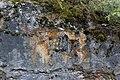 Kalksteinbrüche am Rauhberg (MGK27029).jpg