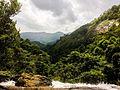 Kattakayam waterfalls.jpg