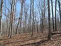 Kings Mountain National Military Park - South Carolina (8557789295) (2).jpg