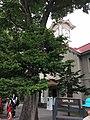 Kita 1 Jonishi, Chuo Ward, Sapporo, Hokkaido Prefecture 060-0001, Japan - panoramio (1).jpg