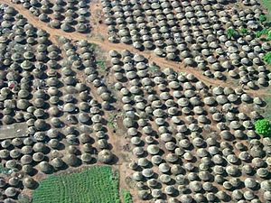 2006–08 Juba talks - Huts in the Kitgum IDP camp are tightly packed together