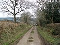 Knacker's Hole Lane - geograph.org.uk - 1184550.jpg