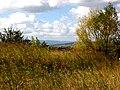 Kolomyya, Ivano-Frankivs'ka oblast, Ukraine - panoramio (9).jpg