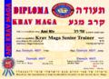 Krav Maga Senior Trainer-small.png