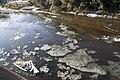 Kuji River 40.jpg