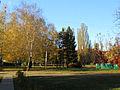 Kyiv Yunist Park16.JPG