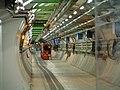 LHC, CERN.jpg