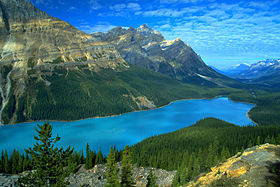 Image illustrative de l'article Lac Peyto