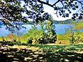 Lac de Narlay, vu du promontoir Nord.jpg