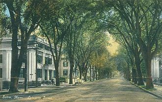 Elm - Lafayette Street in Salem, Massachusetts in 1910: an example of the 'high-tunnelled effects' of Ulmus americana avenues once common in New England