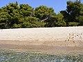 Lagomandra, Sitonia, Grčka - panoramio (2).jpg