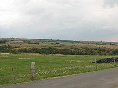 Landscape-IMG 7023.JPG