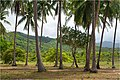 Landscape next to Calitang - panoramio.jpg