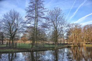 Haagse Hout - Landscape of Haagse Hout.