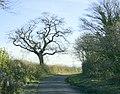 Lane to Chequers Farm, near Biddestone - geograph.org.uk - 1073588.jpg
