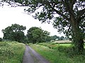Lane to Poltimore Farm - geograph.org.uk - 474241.jpg