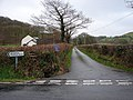 Lane to Troed-y-rhiw and Pant-glas - geograph.org.uk - 290602.jpg