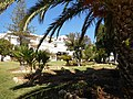 Lanscaped Gardens in Rua Sir Cliff Richard, Albufeira, 23 September 2015.JPG