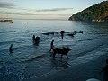 Le travail à Madagascar 06.jpg