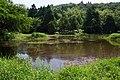 Lengshuikeng Eco Pond 冷水坑生態池 - panoramio (1).jpg