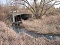 Levi Creek (324947178).jpg