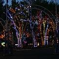 Lighting Trees 0726 (7470232692).jpg
