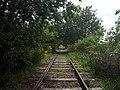 Ligne Le Puy Langogne.jpg